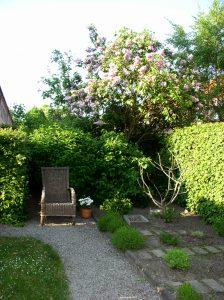 Detalj från trädgården i Tallen 3. Fotograf: Ann-Christine Buch.